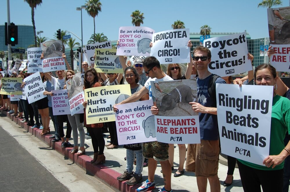 PETA protest against Ringling Bros In L.A.