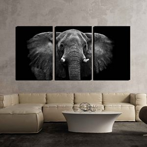 Elephant 3-Panel Canvas Wall Art: Gifts for elephant lovers